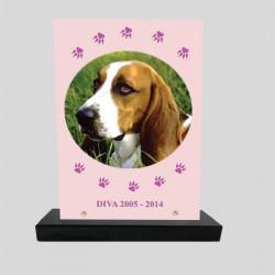 Plaque souvenir personnalisée animaux - Rectangle rose et pattes de chiens - sur socle en granit