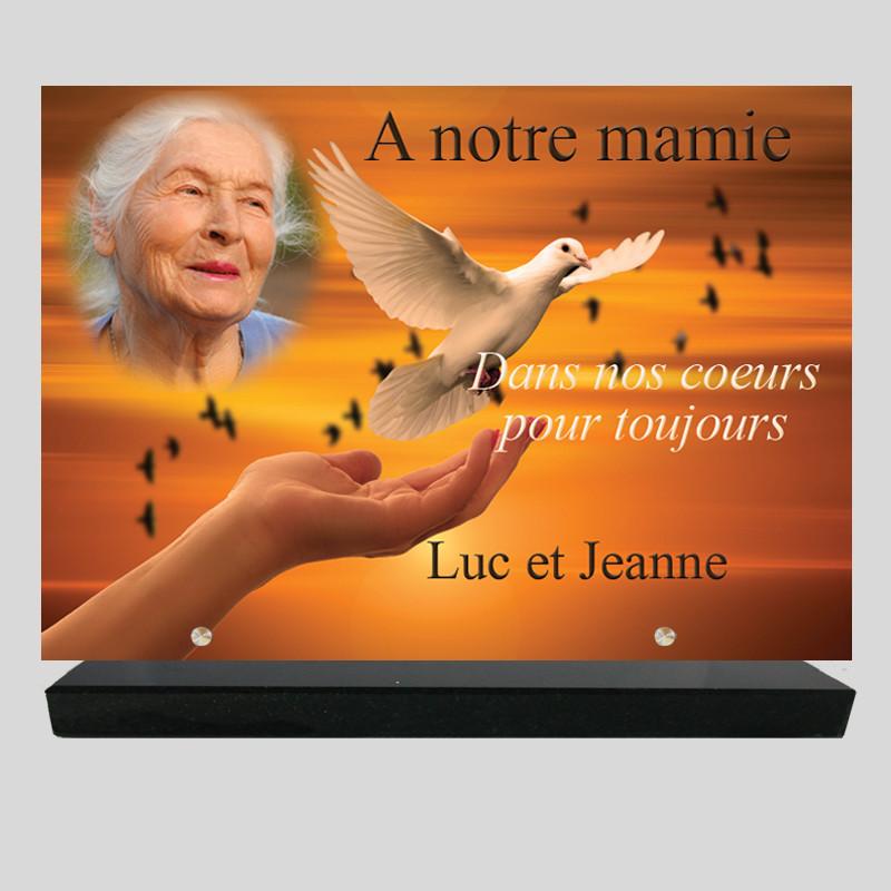 Plaque funéraire Rectangle - Colombe sur la main avec photo - texte sur socle granit